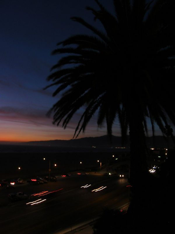 Sunset in Santa Monica looking N toward beach and far shore, palm tree in silhouette
