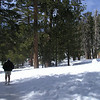 On the snow-packed trail - Palm Springs tram