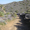 On the trail - Joshua Tree National Park