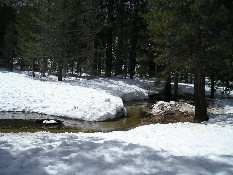 The stream through the snow of Palm Springs