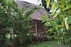Our bungalow at Manu.