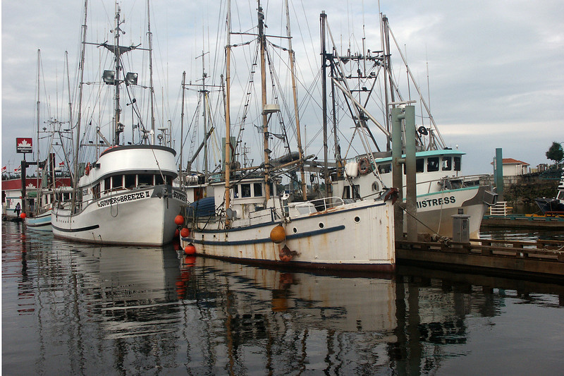 Fishing boats at Nanaimo on Vancouver Island <br /> where the ferry goes to the city of Vancouver.
