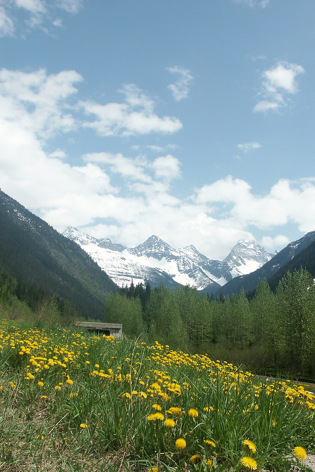 ROADS THROUGH THE ROCKIES: First sight of the Canadian Rockies traveling to Banff.
