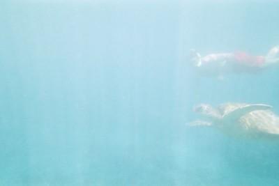 2005.06.04 Maui