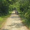 Elroy-Sparta Trail