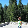 Vadis pointing to the tall trees at Yosemite NP