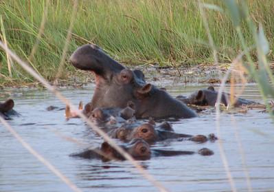 06 Africa Vol. 2, Namibia