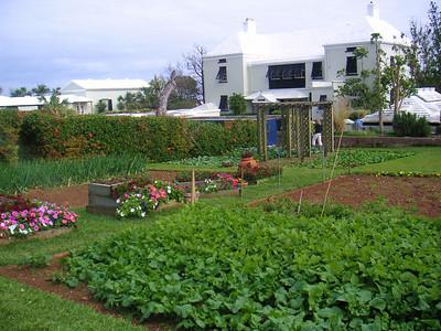 MINOLTA  The Queen's vegetable and herb garden