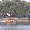Lake at Kyneton Bushland Resort