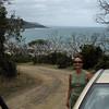 The road back to the Koala