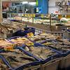 Fish market in Hay Market