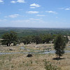 View across Barossa Valley