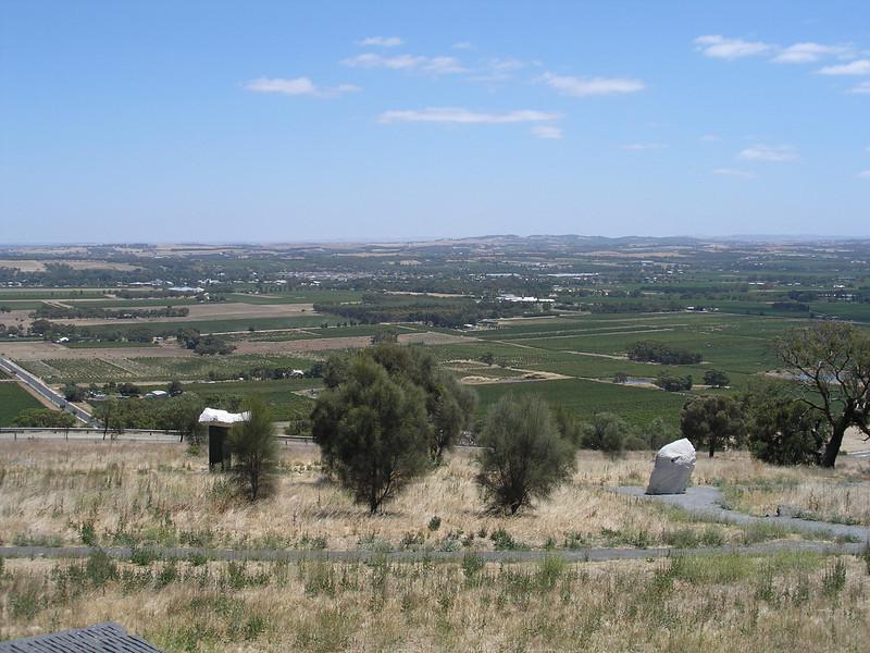 Barossa Valley vinyards