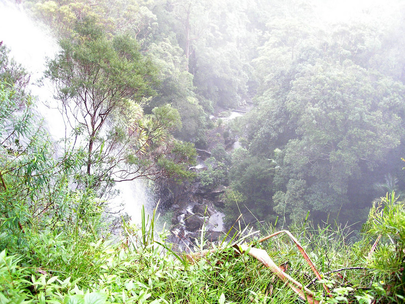 Valley at Goomoolahra Falls