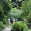 Botanical Gardens - Timo, Vadis, Tony