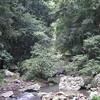 Stream at Natural Bridge