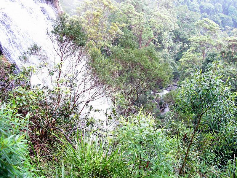 Valley at Goomoolahra Falls