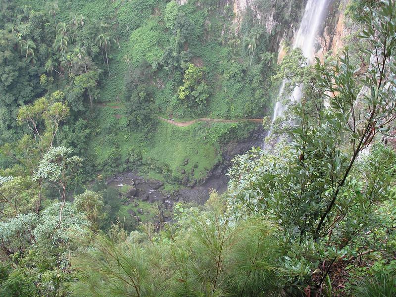 Valley below Purlingbrook Falls