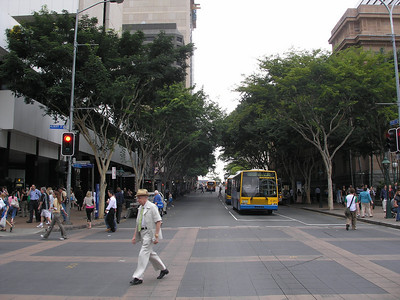 Brisbane street - note the trees