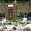 Birds in dry fountain in Brisbane