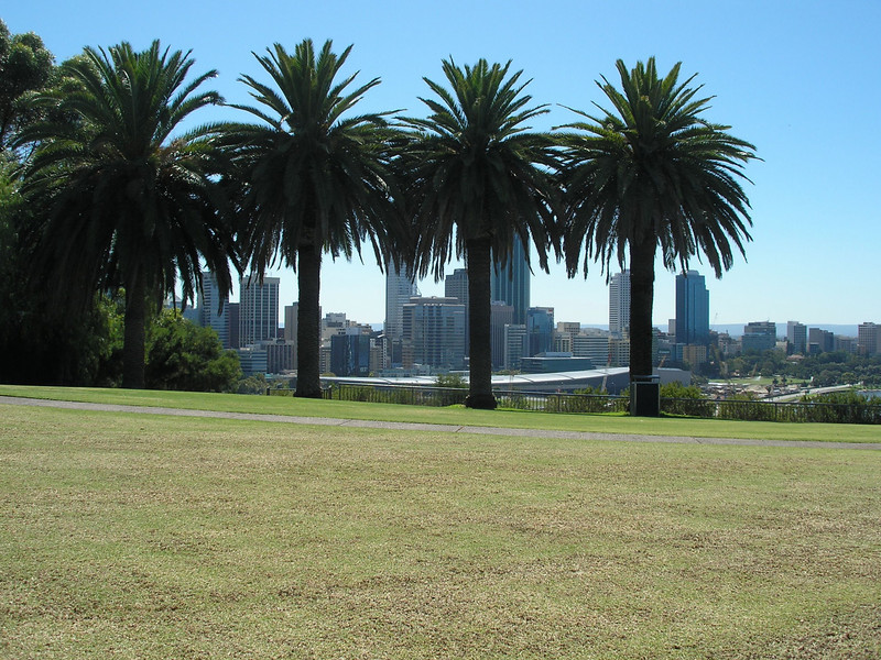 Downtown Perth from King's park