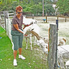 Feeding the Alpaca