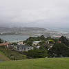 View of Wellington's airport from Mount Vernon