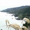 South island west coast