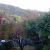 Autumn Color at Arrowtown