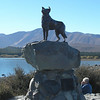 Monument to Sheep Dog - Lake Tapeko