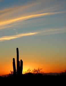 0114 Arizona Sunset