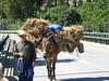 Spain agricultural transportation