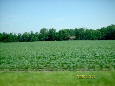 Hwy36<br /> A lot of corn field were along the hiway to Rockville.