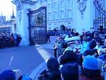 13 - buckingham crowd