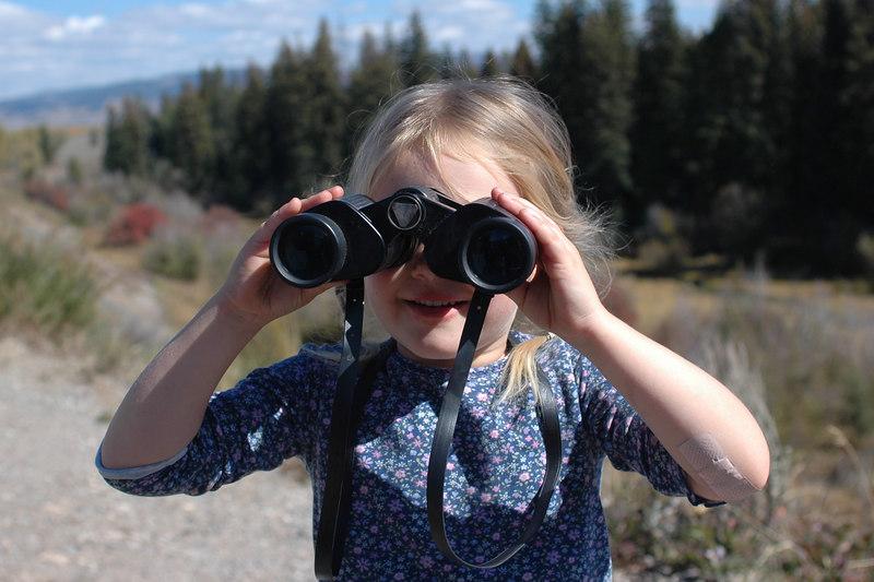 Kelly looking for mooseGrand Teton National Park