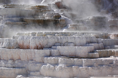 Mammoth Hot Springs Lower Terrances Yellowstone National Park