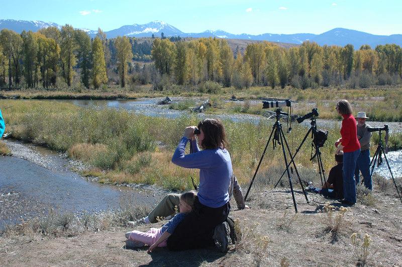 Spotting for mooseGrand Teton National Park
