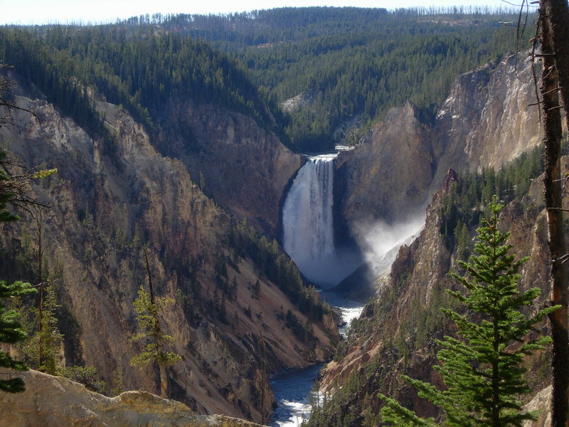 Grand Canyon of Yellowstone Viewed from Artists Point Yellowstone National Park