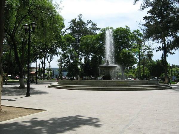 2007-08 Oaxaca