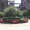 Flora inside Budweiser grounds