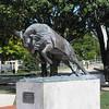 Bill the Goat statue - USNA