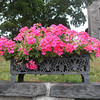 Flower box across street from USMA Visitor Center