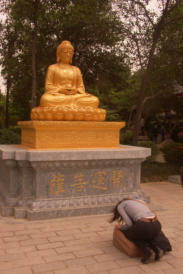 Praying to the golden Buddha.