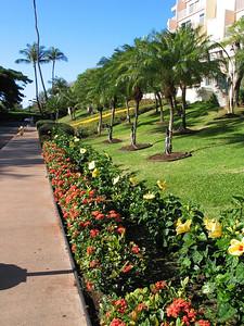 09 - Kanapali Beach Club east sidewalk