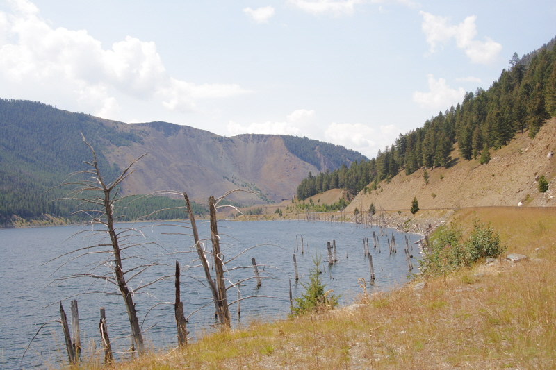 Quake Lake, located West of Yellowstone NP. The lake was formed by an earthquake in 1959 which measured 7.3 on the Richter scale and caused an 80 million ton landslide which dammed the Madison River. The slide area is in the center of the photo. The landslide traveled down the south flank of Sheep Mountain, at an estimated 100 miles per hour, killing 28 people who were camping along the shores of Hebgen Lake and downstream along the Madison River. The earthquake is the largest known to have struck the state of Montana in recorded history.