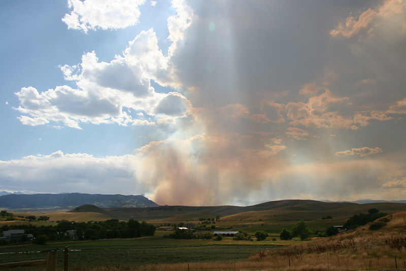Little Goose fire in the Bighorn Mtns West of Sheridan, WY.