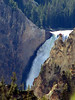 Lower Falls.  Grand Canyon of the Yellowstone.