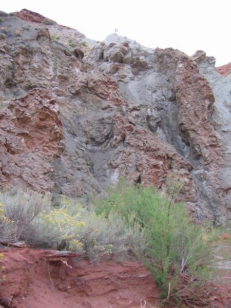 2007 Onion Creek