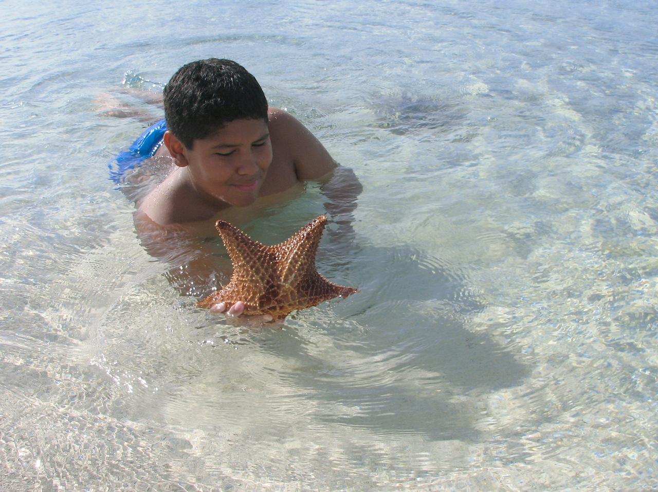 And later that afternoon we go swimming and Caesar finds a starfish...<br /> <br /> Y luego esa tarde, Cesitar encuentra una estrella de mar mientras nada en la playa...