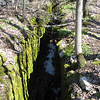 """Here is a long crack from the separation of the lip of the escarpement... what you don't see is that the """"falling"""" side is about 100' wide, and is where the hiking path is. I hope it's a gradual shift. (Cape Dundas Loop Side Trail)"""
